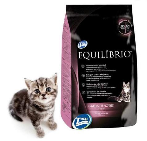 Harga Makanan Kucing Equilibrio